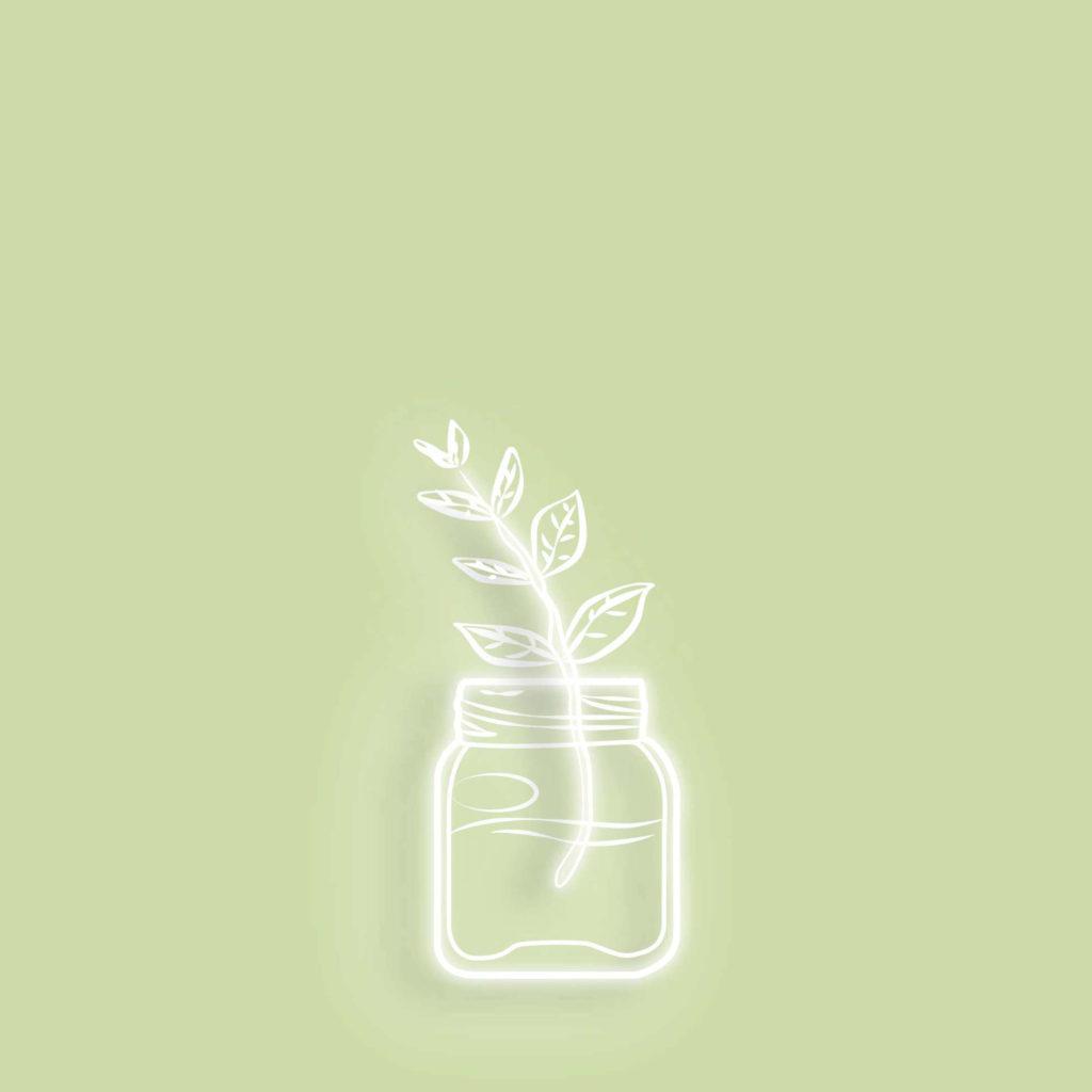 illustration-lueur-fleur